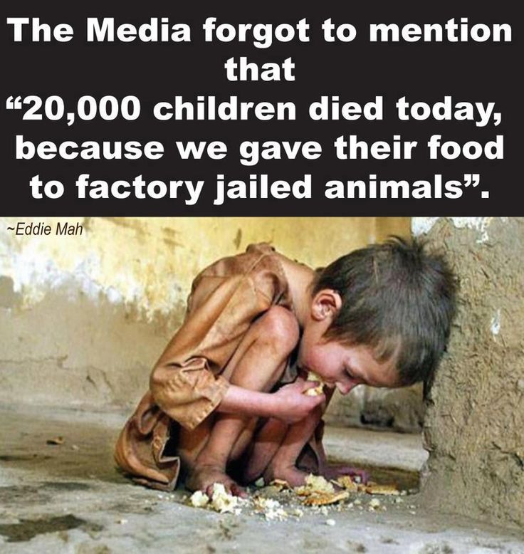 20,000 children died today, because we gave their food to factory jailed animals. So sad, so wrong!