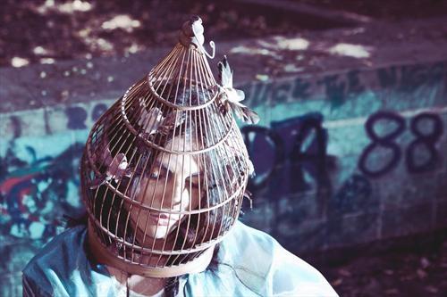 cage au follies