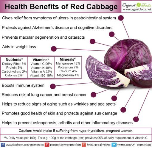 The health benefits of red cabbage include a prevention of premature aging, reducing the chances of cancer, improve the health of the skin and eyes, helps in weight loss, boosts the immune system, helps to build stronger bones, detoxifies the body, prevents diabetes, improves heart health, slows down the onset of Alzheimer's, and treats ulcers.