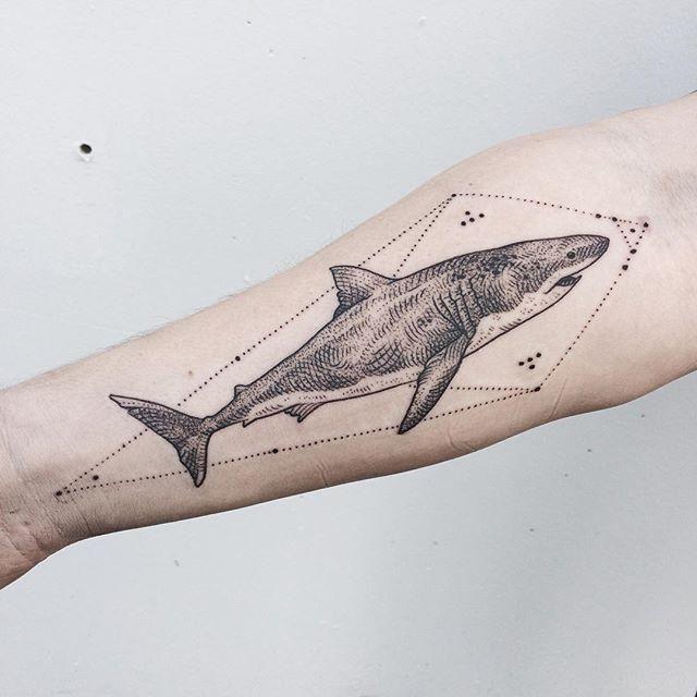 Conheça nosso post com 70 fotos incríveis de tatuagens de tubarão para você se inspirar. Confira!