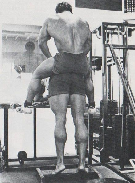 Oak Roots: How Arnold Turned His Biggest Weakness His ...