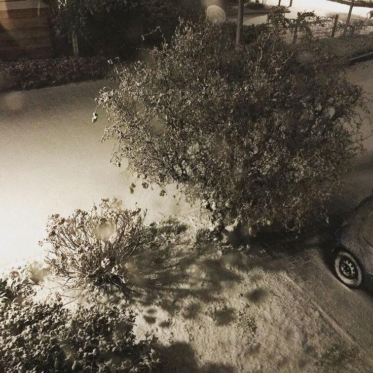 Winter in Twello! #winter #winters #snow #sneeuw #december #twello