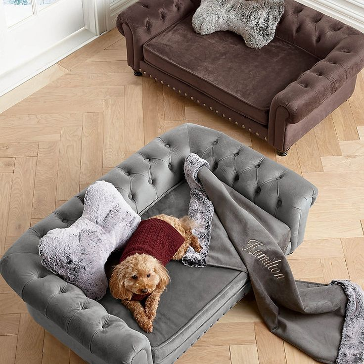 Wentworth Tufted Dog Sofa Dog couch, Dog bed, Elevated