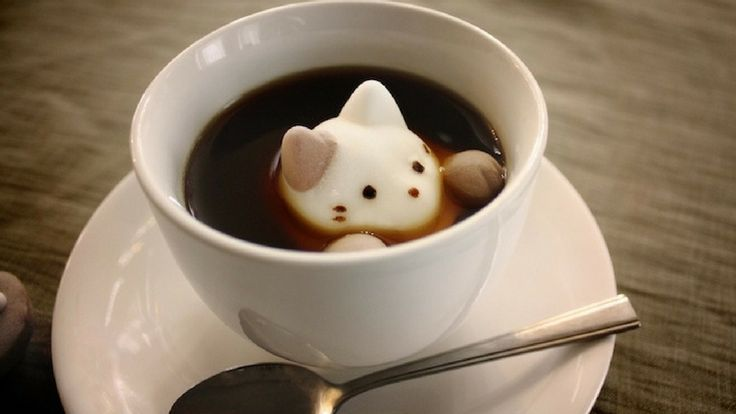 Japan has outdone itself with a combination of cats and absolute adorableness again with these marshmallows cats. Could be a perfect present for a cat lovin #coffee #marshmallow #sweets #cup #drink