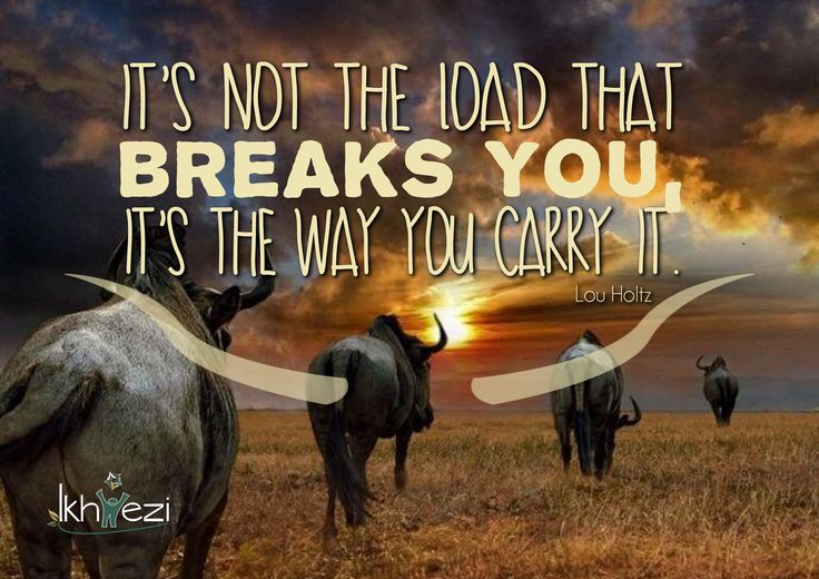 """""""It's not the load that breaks you, it's the way you carry it."""" (Lou Holtz) #load #dontgiveup #persevere #lifejourney  (scheduled via http://www.tailwindapp.com?utm_source=pinterest&utm_medium=twpin&utm_content=post27512964&utm_campaign=scheduler_attribution)"""