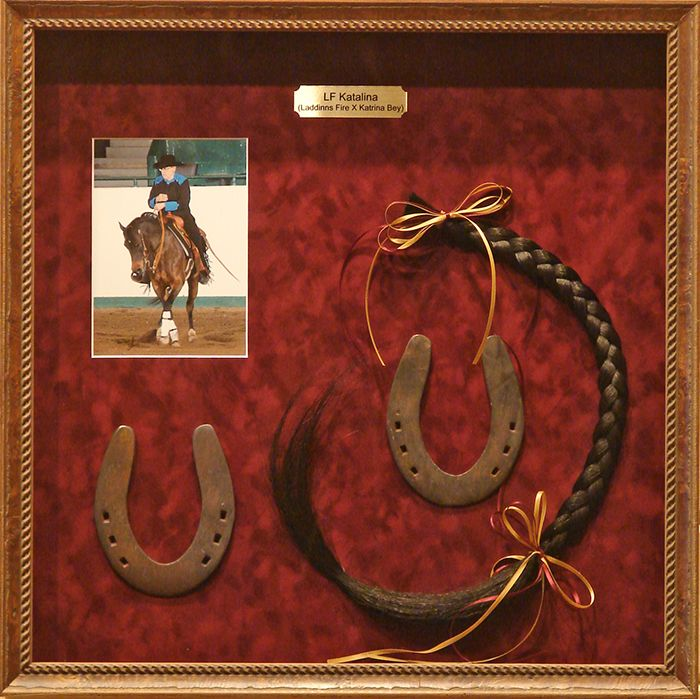 memorial horse shadow box- composition isn't the greatest but still a good starting point for a horse shadow box.