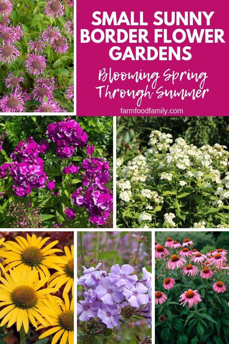 Shorter Perennial Flowers Fit Petite Gardens Flowers Perennials