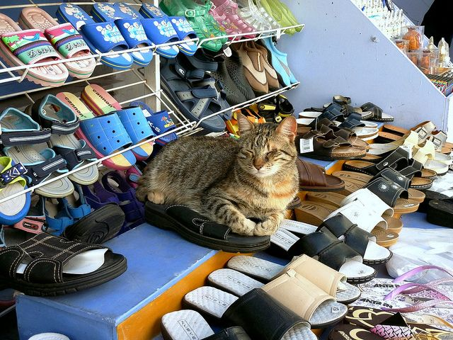 The storekeeper in Tinos island, Greece