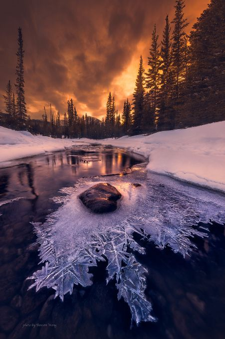 Winter Sunset in the forest Nature photography