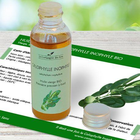 Huile végétale de Calophylle Inophyle BIO (ou huile de Tamanu) pour lutter contre la couperose et les varices en favorisant la circulation sanguine mais aussi contre l'acné
