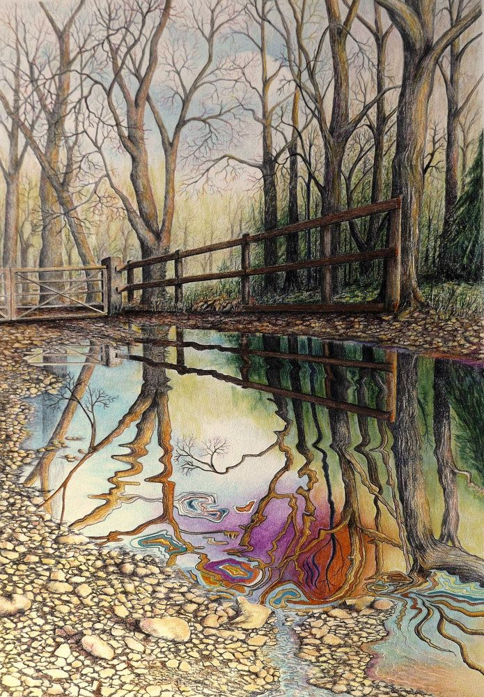 Distortion in realism art by david neace find this pin and more on colored pencil landscape
