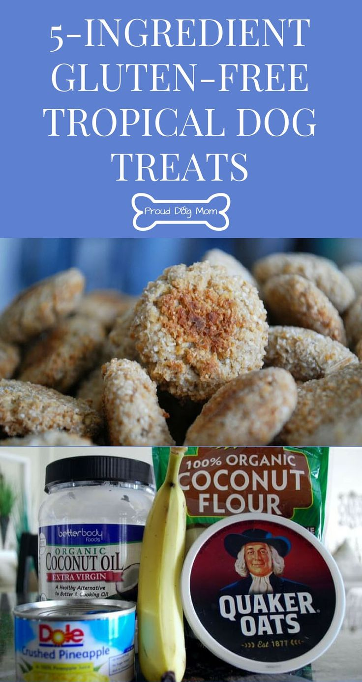 Find brown rice flour and tapioca flour, plus lots of other healthy wheat and gluten free flours online. Pineapple is high in Vitamin C, so don't hold back. Make these homemade dog treats for all the dogs in your extended fur family. Coconut oil can help your dogs skin and coat.