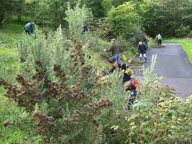 Volunteering in the British Countryside is fulfilling and helps keep you healthy! See how: http://www.aboutbritain.com/articles/british-countryside-get-involved.asp