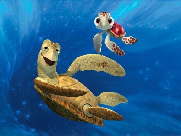 Crush Et Squiz Nemo Disney Pinterest Crushes