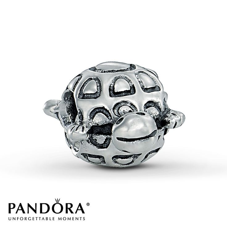 Jared Jewelry Pandora Bracelet: Jared - Pandora Charm Turtle Sterling Silver