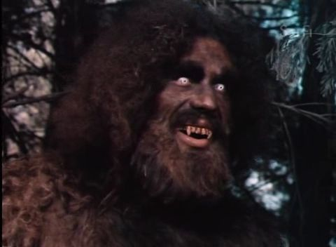 bigfoot women Culture bigfoot seen (and heard) in new video a british sasquatch enthusiast claims to have captured the sights and.