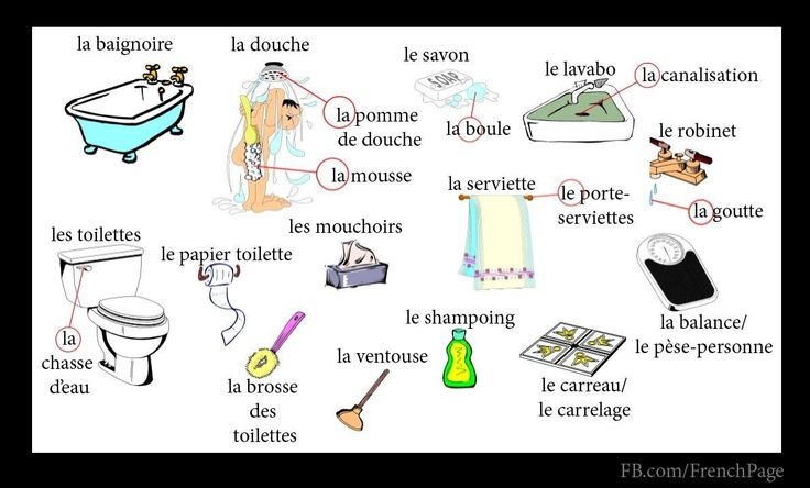 Préférence Bathroom | FRENCH Learning | Pinterest | Language, French lessons  SW76