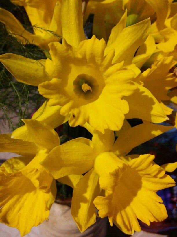 Egy kis tavaszi hangulat! ☺