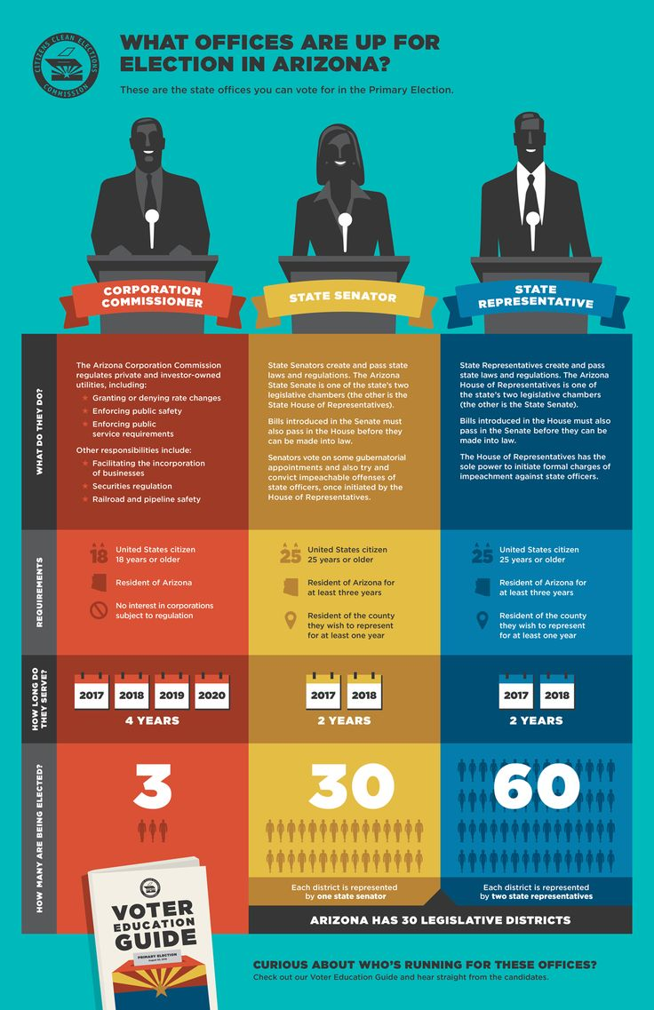 Primary Election - Office Infographic