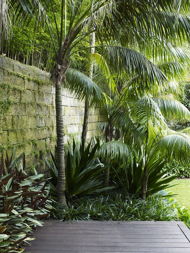1110 best Tropical Landscaping images on Pinterest Tropical