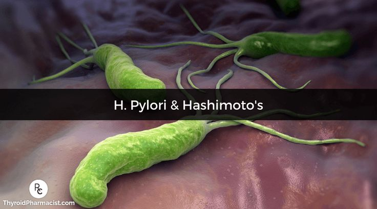 Helicobacter pylori, which is connected to both Hashimoto's & Graves' disease, is the root cause for many symptoms. Is it time to heal your gut infections?