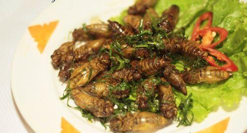 Британские ученые хотят научить людей любить блюда из насекомых     ... http://sasl.ru/wp-content/uploads/2015/05/bath127.jpg Подробнее можно прочитать здесь: http://sasl.ru/interesnoe/britanskie-uchenye-khotyat-nauchit-lyude.html Категория: #Интересное Теги: #Еда, #Интересное, #Насекомые