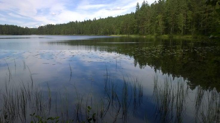 A lake at Seitseminen national park.