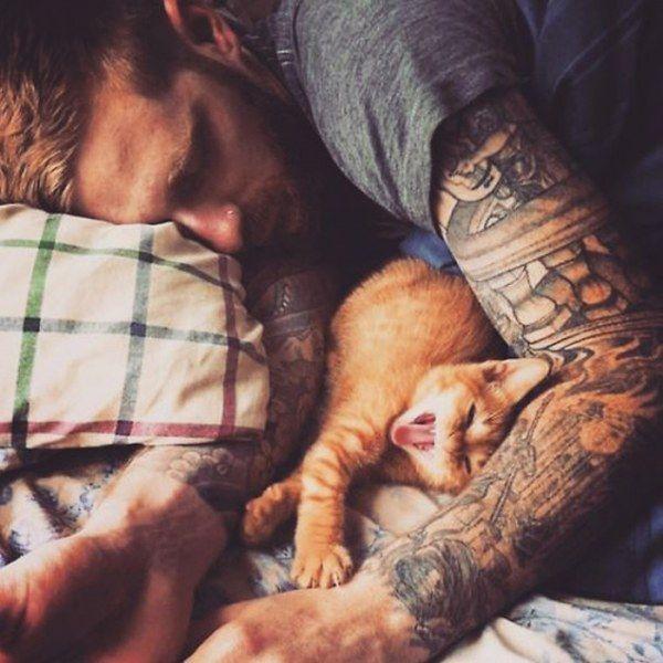 Горячие парни и милые котики: идеальное сочетание (17 фото)