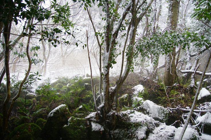 Geomunoreum Jeju Island, South Korea