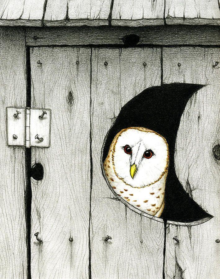 #Owl Art
