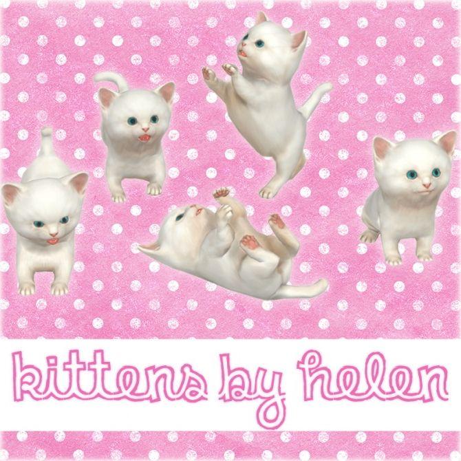 Kittens at Helen Sims via Sims 4 Updates