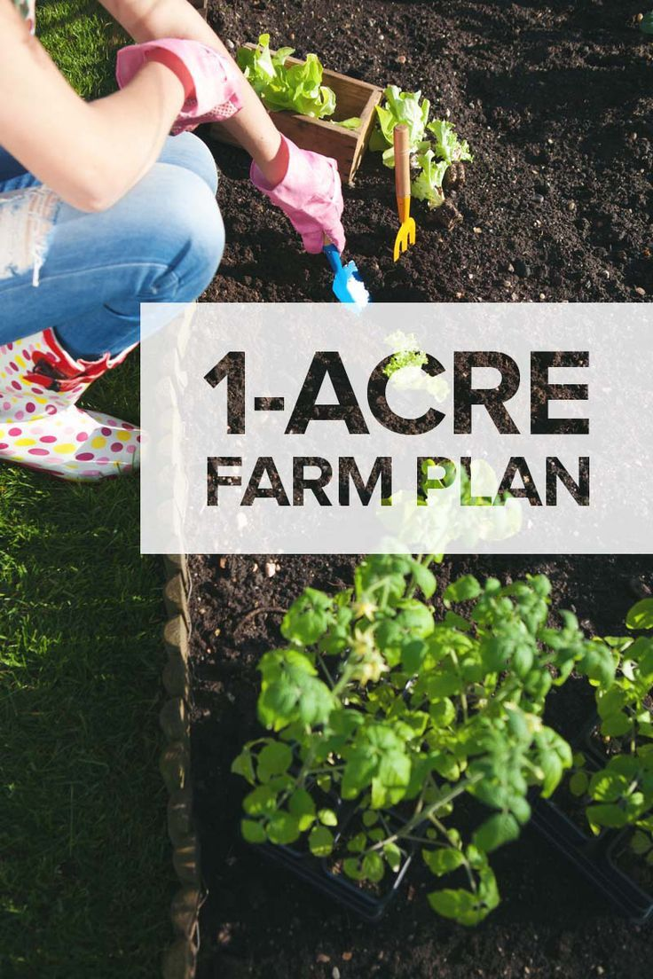 1-Acre Farm Plan: Here's What to Plant, Raise, and Build on…