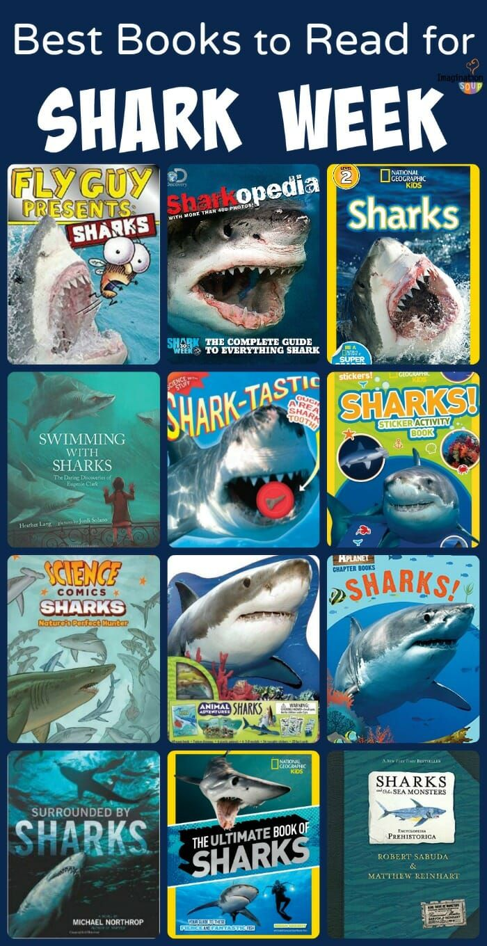 The Best Books For Kids To Read During Shark Week Or Anytime Imagination Soup Shark Books Shark Week Shark Activities [ 1360 x 700 Pixel ]