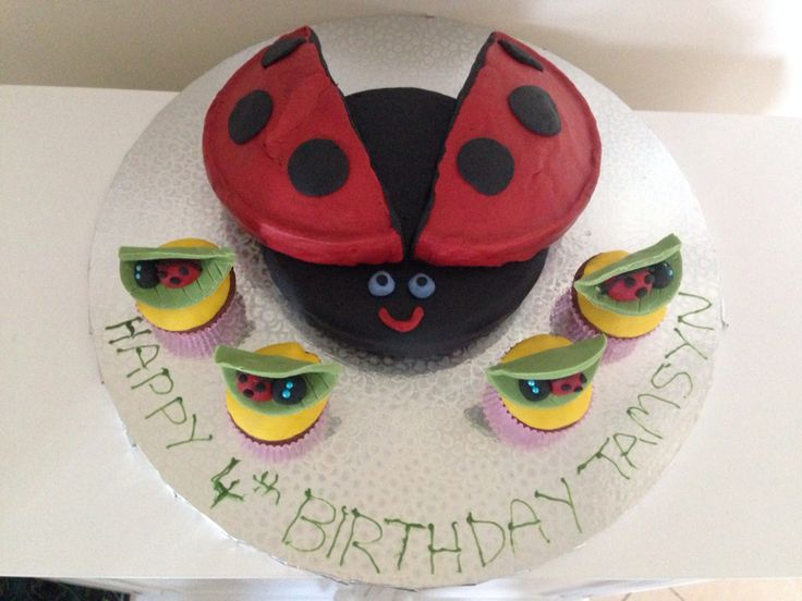 Ladybug birthday cake with cupcakes