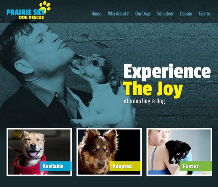 Prairie Sky Dog Rescue in Saskatchewan website link on http://www.bestcatanddognutrition.com/roger-biduk/canadian-animal-rescues-shelters/ Roger Biduk