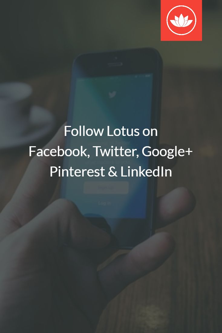 Get updates from Lotus on Facebook, Twitter, Google+, Pinterest, and LinkedIn. Tell your friends and stay in touch!
