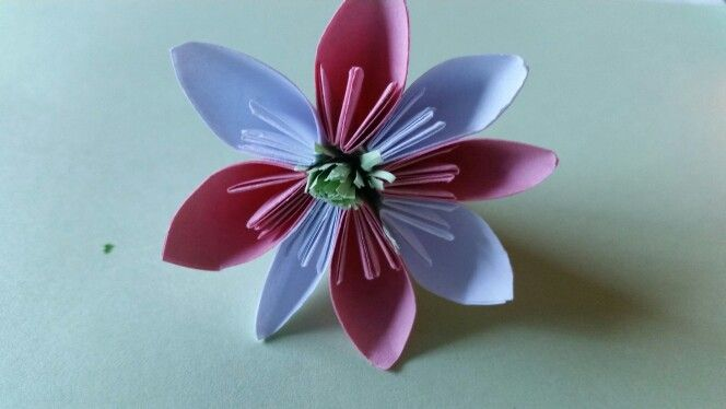 My first paper flower.