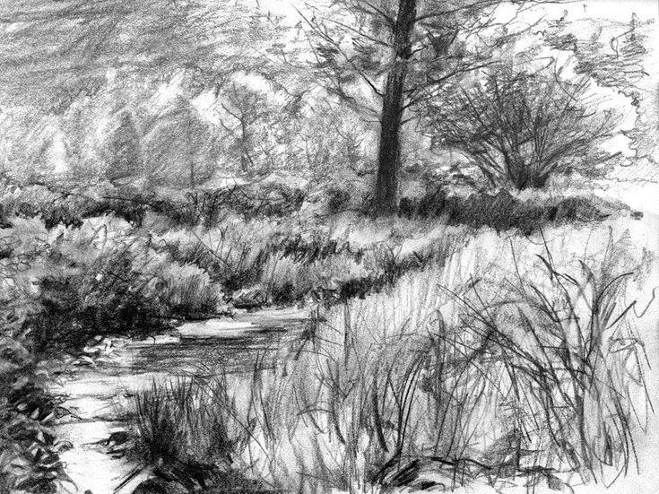 Pencil Sketches of Nature Scenery | Pencil Sketch Scenery Pictures
