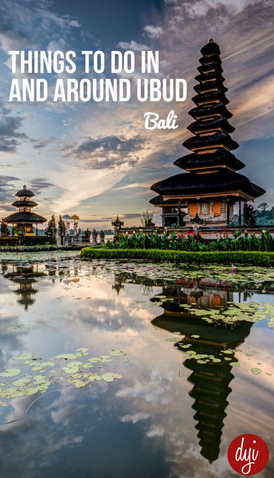 After living in Ubud for 3 months I've had time to find some of the less well known highlights around the city. Here's a quick guide of some things you should really see when you visit.