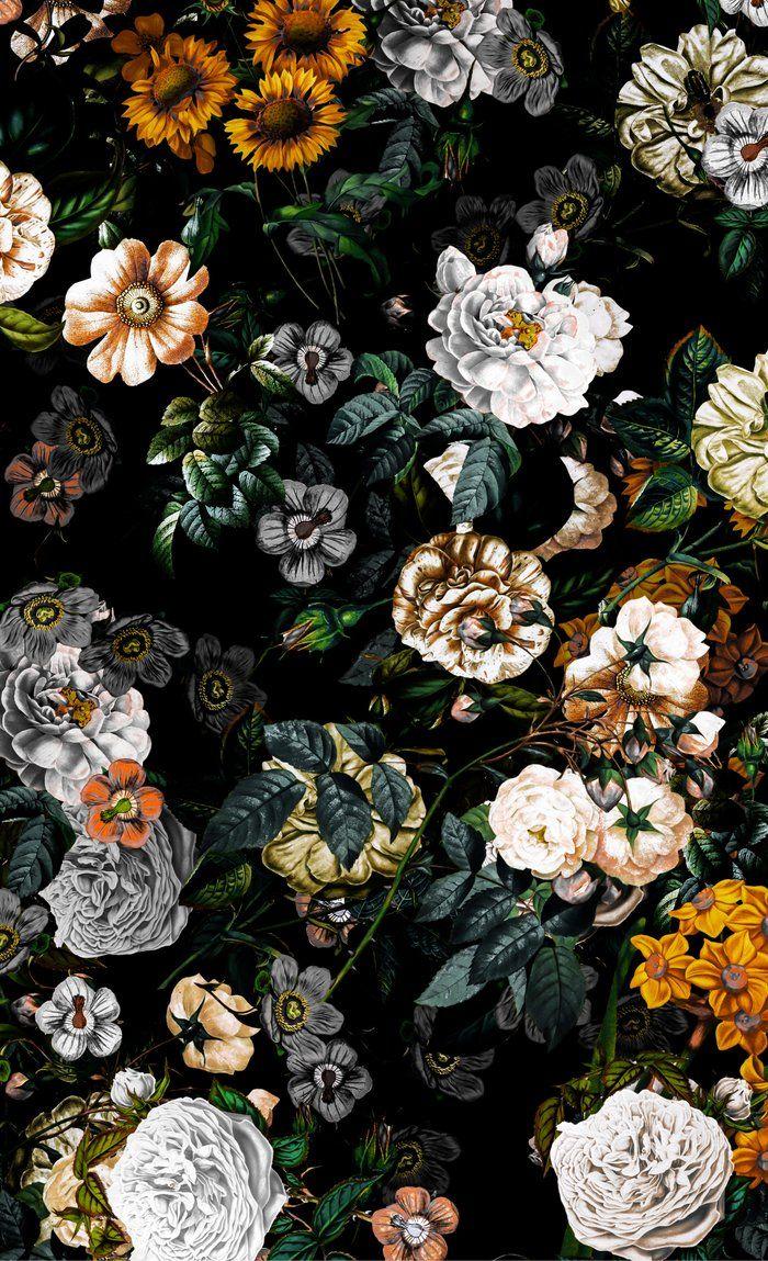 Floral Night Garden Window Curtains Black Background Wallpaper