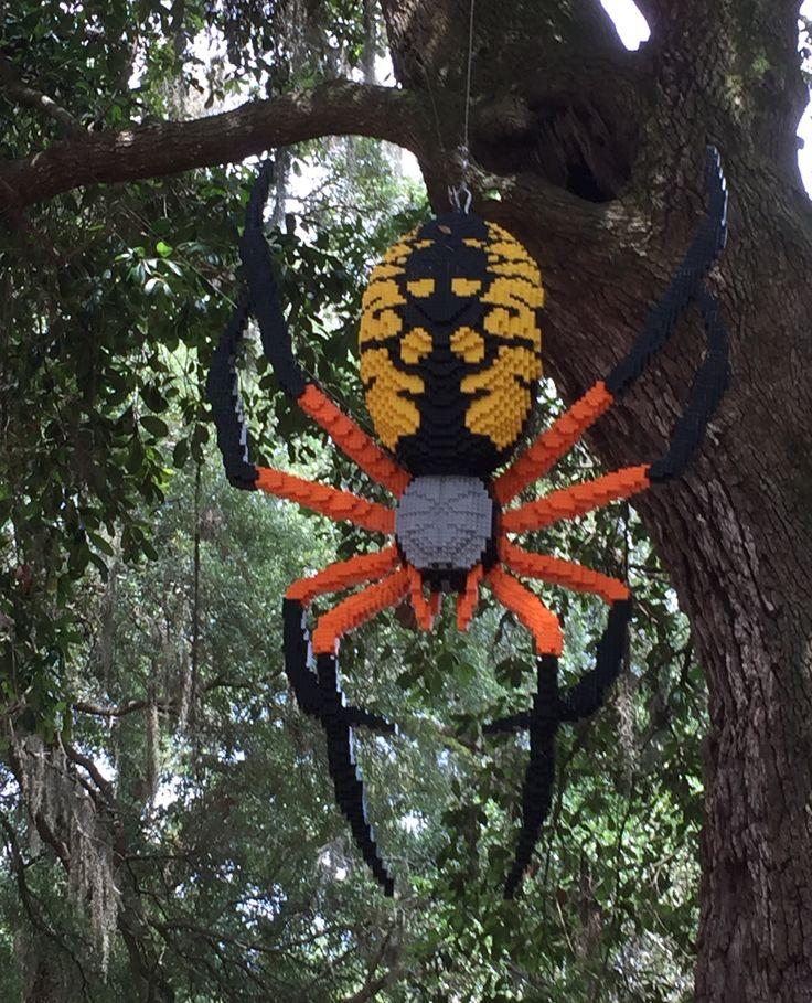 Haiku – Friendly Spider