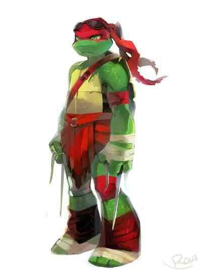 Raph 2014 Version and 2012 version