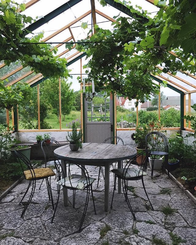 Our own private greenhouse... I'm thinking to set up a nice candlelight dinner in here and set the table real nice... And listen to Arthur Rubinstein Sonata 14... One of my favorites... #Gotland #farmhouse #greenhouse #dietlindwolf #Sweden #retreat #workshop