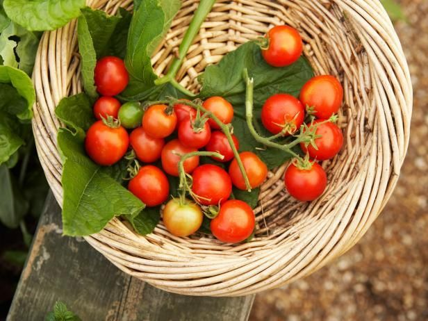 Keep fresh cherry tomato flavor on your meal-time menu well beyond the garden season by preserving excess fruits in the freezer.