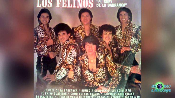 Los Felinos Rancheras