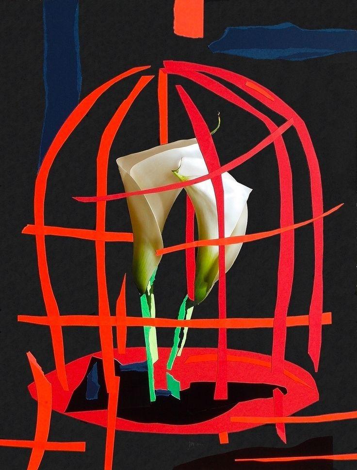 """andrea mattiello """"La libertà si respira in una gabbia rossa"""" collage su cartoncino cm 80x105; 2015 #andreamattiello #art #artistaemergente #emergingartist #collage #paper #cardboard"""