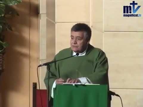 MI RINCON ESPIRITUAL: Evangelio y Homilía de hoy viernes 1 de diciembre ...