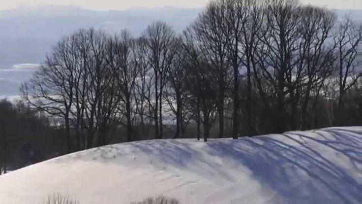 Zaborin - Hokkaido Ryokan || 坐忘林 zaborin.com