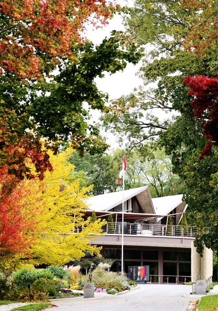 The Festival Theatre in the autumn! So pretty! Stratford Shakespeare Theatre, Stratford, Ontario, Canada - My favourite theatre!