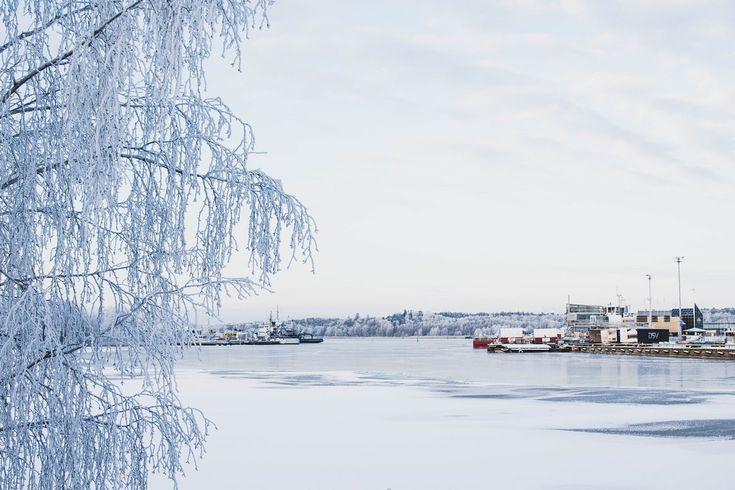 Winter Wonderland Turku #turku #åbo #finland #winter #ice #frosty